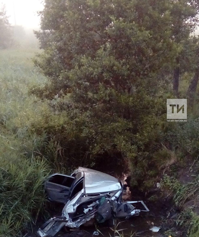 В Альметьевском районе «Калина» вылетела с дороги в ручей