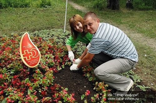 Клумба в форме сердца, куда были высажены красные цветы