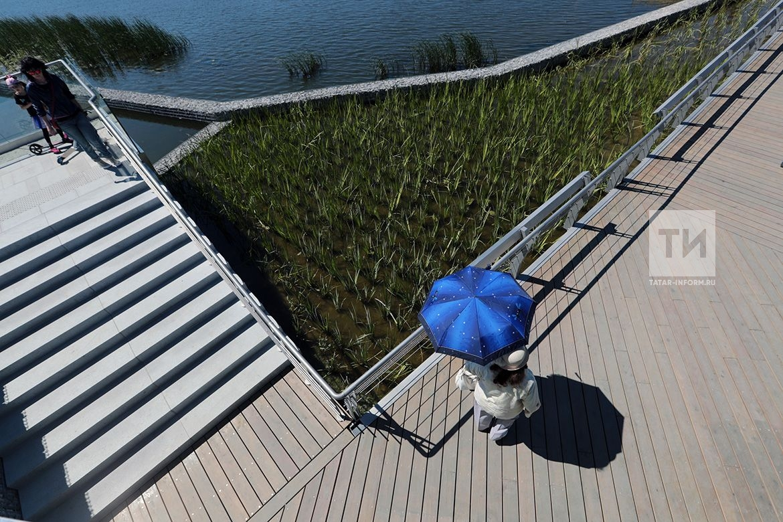 Специалист КФУ: вавгусте-2018 вКазани предполагается среднемесячная температура воздуха +18