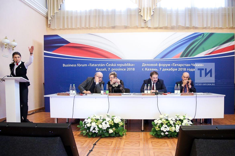 Песошин: Нужно придать новый импульс сотрудничеству Татарстана и Чехии